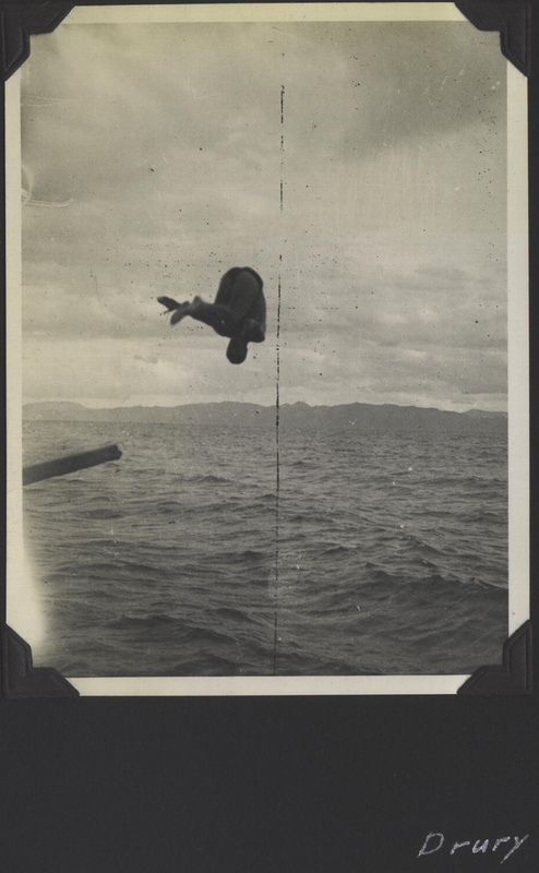 WWII NG Drury diving 1
