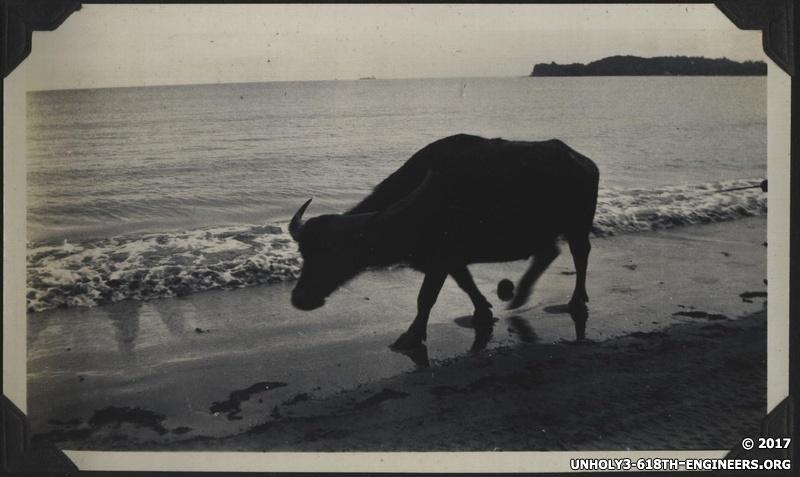 WWII PI buffalo beach 1