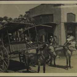 WWII PI donkey carts